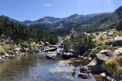 נהר בדרך אל מסלול שלושלת האגמים