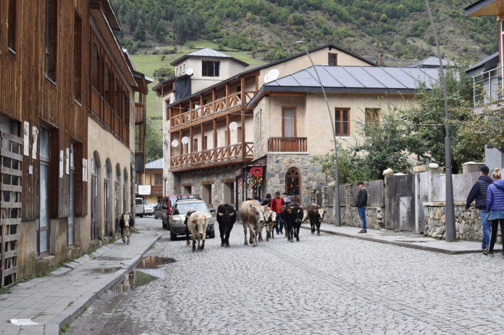 הכפר מסטיה