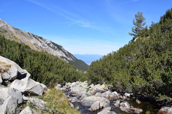 בנסקו מסלול קל לדוברינישטה דרך השביל האקולוגי