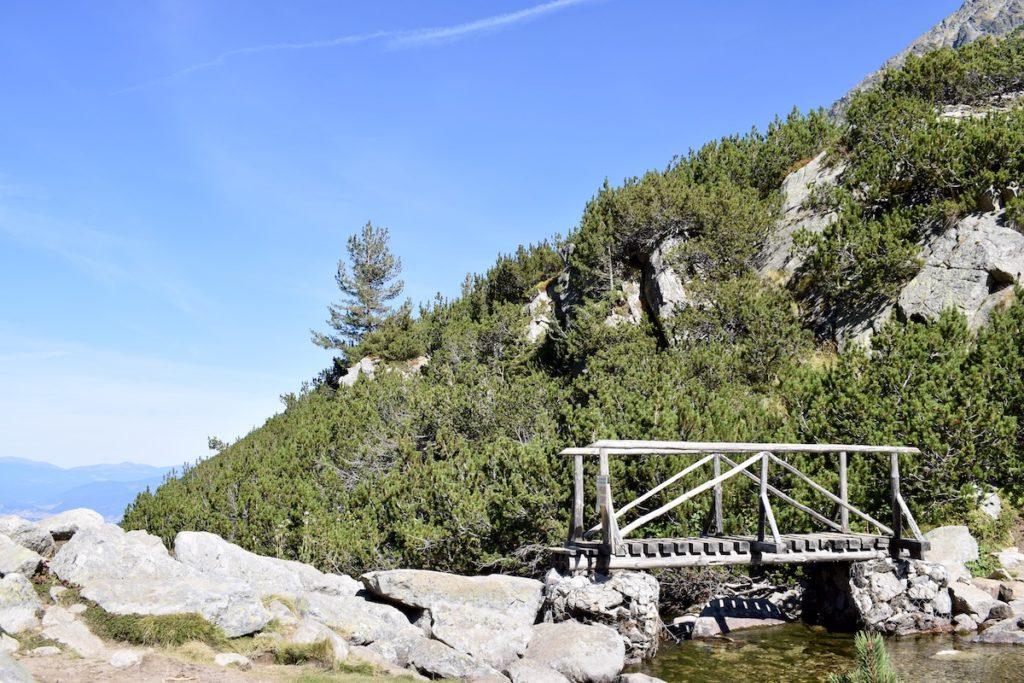 גשר העץ במסלול שלושת האגמים
